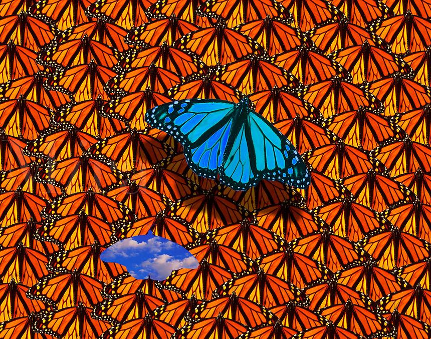 Monarchs - Leaving the Crowd - computer illustration.