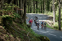 the breakaway group up the Col de Porte<br /> <br /> 73rd Critérium du Dauphiné 2021 (2.UWT)<br /> Stage 6 from Loriol-sur-Drome to Le Sappey-en-Chartreuse (167km)<br /> <br /> ©kramon