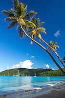 Maho Bay <br /> Virgin Islands National Park<br /> St. John<br /> US Virgin Islands