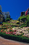 """Lombard Street """"the crookedist street in the world""""  with an assortment of flowers lining the winding street San Francisco California USA"""
