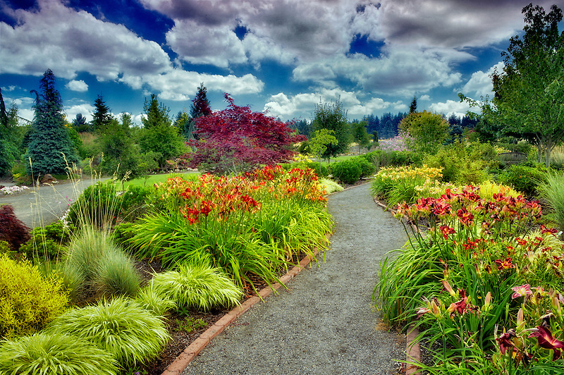 Pathway in Oregon Garden. Oregon