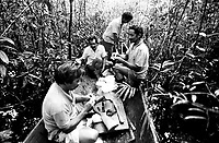 Índios Werekena, moradores da comunidade de Anamoim no alto rio Xié, chegam a mata para o corte da piaçaba (Leopoldínia píassaba Wall). A  árvore que normalmente aloja os mais variados tipos de insetos representando um grande risco aos índios durante sua coleta . A fibra  um dos principais produtos geradores de renda na região é  coletada de forma rudimentar. Até hoje é utilizada na fabricação de cordas para embarcações, chapéus, artesanato e principalmente vassouras, que são vendidas em várias regiões do país.<br />Alto rio Xié, fronteira do Brasil com a Colômbia a cerca de 1.000Km oeste de Manaus.<br />06/06/2002.<br />Foto: Paulo Santos/Interfoto Expedição Werekena do Xié<br /> <br /> Os índios Baré e Werekena (ou Warekena) vivem principalmente ao longo do Rio Xié e alto curso do Rio Negro, para onde grande parte deles migrou compulsoriamente em razão do contato com os não-índios, cuja história foi marcada pela violência e a exploração do trabalho extrativista. Oriundos da família lingüística aruak, hoje falam uma língua franca, o nheengatu, difundida pelos carmelitas no período colonial. Integram a área cultural conhecida como Noroeste Amazônico. (ISA)