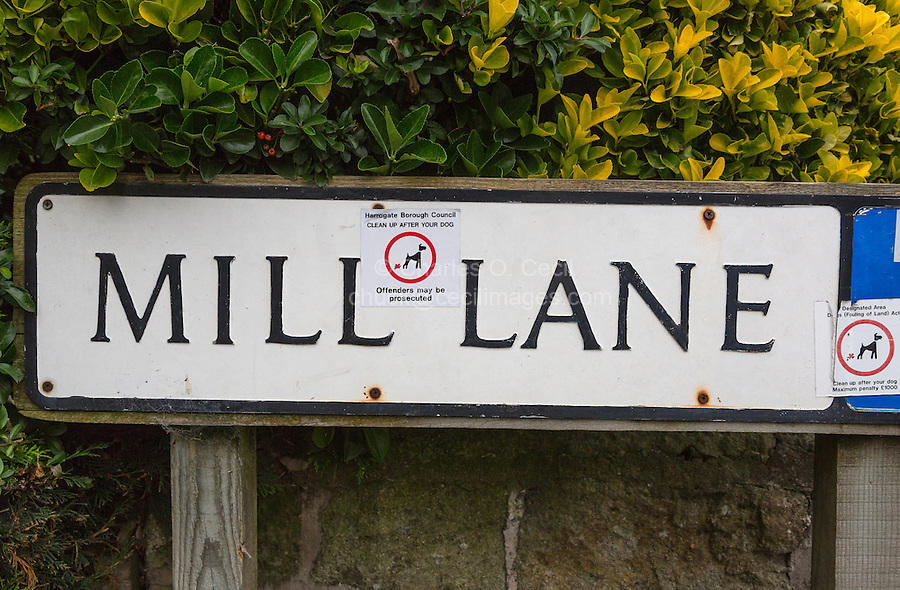 UK, England, Pateley Bridge, Yorkshire.  Street Sign with Notice to Clean up after One's Dog.