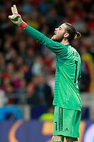 Spain's David De Gea during international friendly match. March 27,2018.(ALTERPHOTOS/Acero) /NortePhoto.com NORTEPHOTOMEXICO