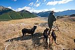 Shepherd & companions, South Island, New Zealand