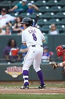 Alex Call (8) of the Winston-Salem Dash at bat against the Salem Red Sox at BB&T Ballpark on April 22, 2018 in Winston-Salem, North Carolina.  The Red Sox defeated the Dash 6-4 in 10 innings.  (Brian Westerholt/Four Seam Images)