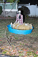 Life-sized skeletons are dressed up for Halloween decorations along Hillcrest Road in Belmont, Massachusetts, USA, on Mon., Oct. 30, 2017. A resident said the neighborhood has been doing similar coordinated decorations along the road for the previous 3 or 4 years. In this image, the skeleton is sitting on a hay bale in a child's swimming pool.