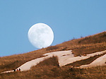 The full moon rises over the top of Mount Sentinel as hikers watch the sunset to the west