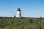 Bird Island Light, Bird Island, Marion, Massachusetts, Buzzards Bay, Cape Cod.