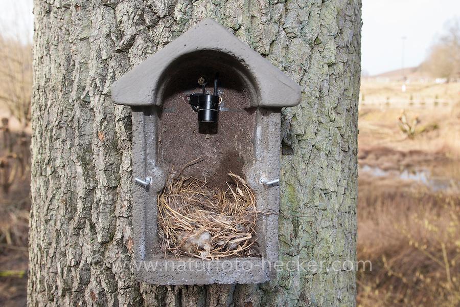 Nistkasten mit Kamera, die das Geschehen im Nistkasten auf einen Bildschirm übertragen kann. Bird Box, nest box with camera in the nesting box that can transfer pictures what is happening to a screen.