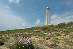 Lighthouses - Leuchttürme