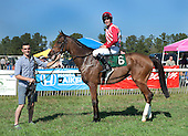 3rd Maiden Claiming Hurdle - Longing To Travel