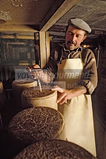 Europe/France/Auvergne/15/Cantal: Affinage du cantal fermier [Non destiné à un usage publicitaire - Not intended for an advertising use] [<br /> PHOTO D'ARCHIVES // ARCHIVAL IMAGES<br /> FRANCE 1980