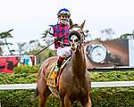 OCT11, 2020 : Royal Approval with Irad Ortiz Jr aboard, wins the Grade 3 Matron  Stakes, for 2-year old fillies on the turf, at Belmont Park, Elmont, NY.  Sue Kawczynski/Eclipse Sportswire/CSM