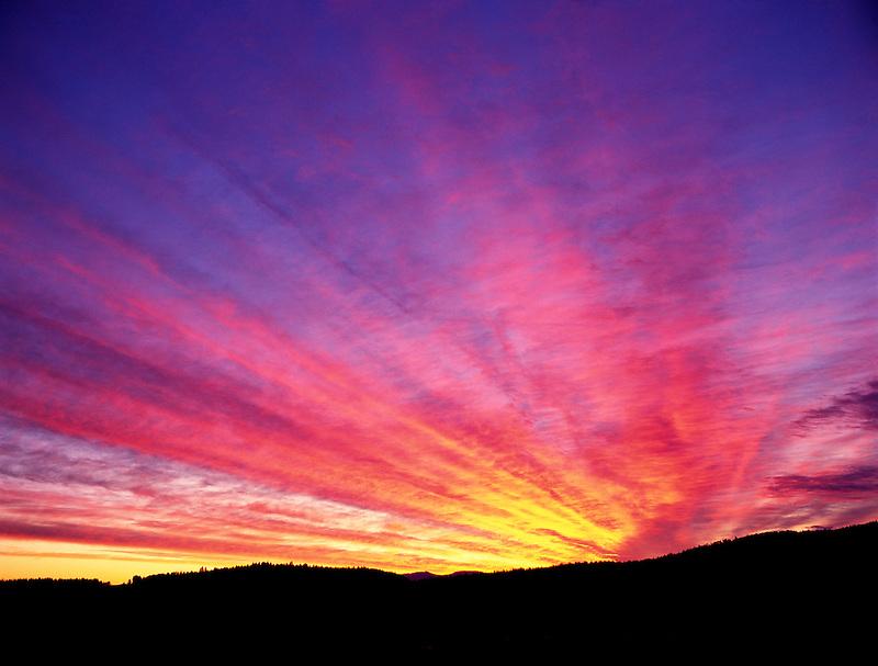Sunrise over farmland. Near Monroe, Oregon