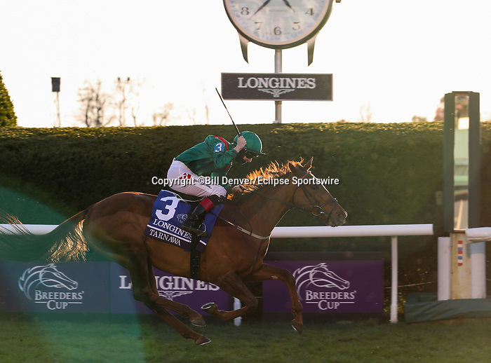 November 7, 2020 : Tarnawa, ridden by Colin Keane, wins the Longines Turf on Breeders' Cup Championship Saturday at Keeneland Race Course in Lexington, Kentucky on November 7, 2020. Bill Denver/Breeders' Cup/Eclipse Sportswire/CSM