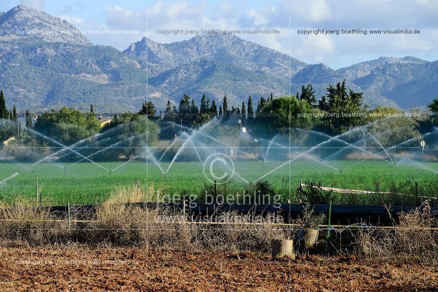SPAIN Mallorca, Binissalem, Finca Biniagual , irrigation of farm / SPANIEN Mallorca, Binissalem, Finca Biniagual