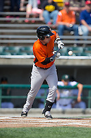 Jeff Kemp (12) of the Frederick Keys lays down a bunt against the Lynchburg Hillcats at Calvin Falwell Field at Lynchburg City Stadium on May 14, 2015 in Lynchburg, Virginia.  The Hillcats defeated the Keys 6-3.  (Brian Westerholt/Four Seam Images)