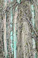 Detail of a commercial fishing net