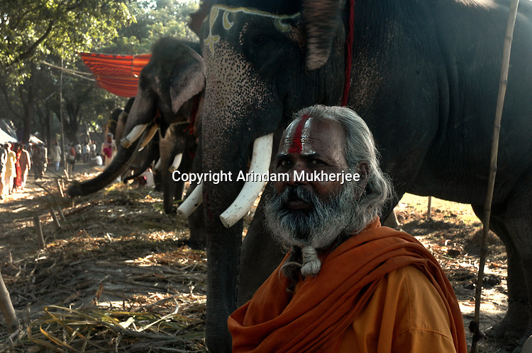 A Sadhu (Indian holy man) at Sonepur fair ground. Bihar, India, Arindam Mukherjee