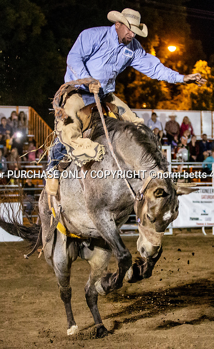 the Ontario RAM Rodeo in Peterborough, Ontario, Canada August 10th, 2018<br /> <br /> Norm Betts<br /> normbettsphotog@gmail.com<br /> 416 460 8743