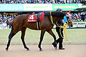 Horse Racing: Kyoto Kinen at Kyoto Racecourse