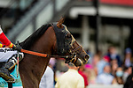 MAY 15, 2021: Risk Taking after the Preakness Stakes at Pimlico Racecourse in Baltimore, Maryland on May 15, 2021. EversEclipse Sportswire/CSM