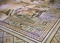 Roman mosaics - The Theonoe Mosaic. Kointos Villa Ancient Zeugama, 2nd - 3rd century AD . Zeugma Mosaic Museum, Gaziantep, Turkey.
