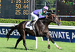 16 August 2008: Jockey Alan Garcia waves his whip in celebration after guiding Grand Couturier to victory in the Sword Dancer Invitational at Saratoga Race Course in Saratoga Springs, New York.