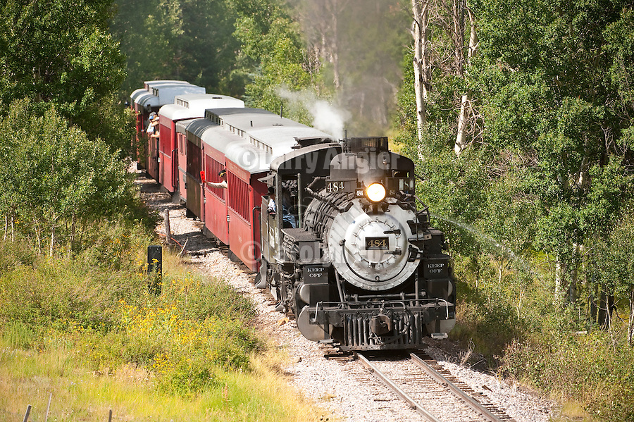 Cumbres & Toltec Scenic Railroad No. 484 (K-36) engine winds up the narrow-guage track eastbound and up the Chama River Canyon to Cumbres Pass, and passes through the forest in an aspen grove on the grade to the Lobato Bridge