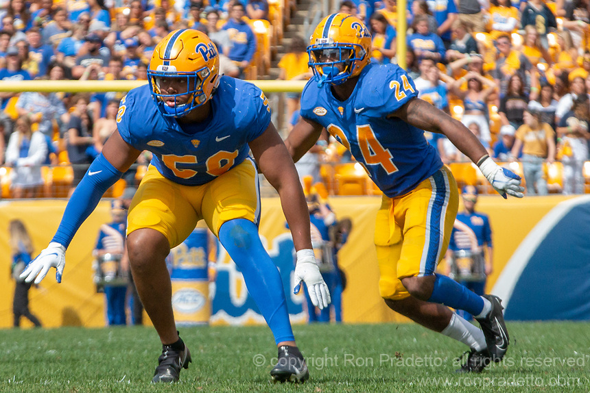 Pitt defensive lineman Dayon Hayes (50) and linebacker Phil Campbell (24).The Pitt Panthers defeated the New Hampshire Wildcats 77-7 at Heinz Field, Pittsburgh, Pennsylvania on September 25, 2021.