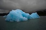 Ice floating in Prince William Sound. Alaska. U.S.A.