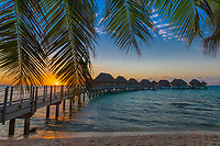 Colorful sunset on overwater bungalows in turquoise lagoon, with palm tree foreground, in Tikehau Tuamotus, French Polynesia, South Pacific Ocean