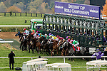 October 31, 2015 : The field leaves the starting gate during the TwinSpires Breeders' Cup Turf Sprint (Grade I) in Lexington, Kentucky on October 31, 2015.  Candice Chavez/ESW/CSM