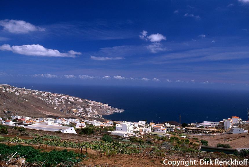 Spanien, Kanarische Inseln, Teneriffa, Tabaiba