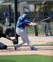 Keibert Ruiz - Los Angeles Dodgers 2018 spring training (Bill Mitchell)