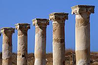 Zypern (Süd), Haus des Theseus (römisch) in Alt-Pafos, Unesco-Weltkulturerbe