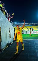 Phoenix's Steven Taylor walks off after the A-League football match between Wellington Phoenix and Brisbane Roar at Westpac Stadium in Wellington, New Zealand on Saturday, 23 November 2019. Photo: Dave Lintott / lintottphoto.co.nz