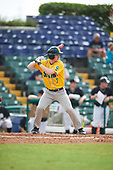 Siena Saints right fielder Zach Durfee (2) at bat during a game against the Pittsburgh Panthers on February 24, 2017 at Historic Dodgertown in Vero Beach, Florida.  Pittsburgh defeated Siena 8-2.  (Mike Janes/Four Seam Images)