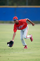 Philadelphia Phillies Julio Francisco (17) during practice before an Instructional League game against the Toronto Blue Jays on October 7, 2017 at the Englebert Complex in Dunedin, Florida.  (Mike Janes/Four Seam Images)