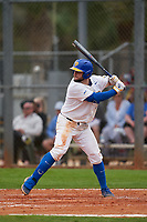 Pitt Panthers David Yanni (24) bats during the teams opening game of the season against the Indiana State Sycamores on February 19, 2021 at North Charlotte Regional Park in Port Charlotte, Florida.  (Mike Janes/Four Seam Images)