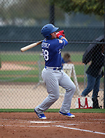 Omar Estevez - Los Angeles Dodgers 2019 spring training (Bill Mitchell)