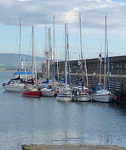Cruising Association of Ireland yachts raft up at the South Quay in Wicklow Harbour as part of the CAI's 'East Coast Whistle Stop Cruise'