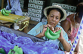 Caribbean - Fair Trade?
