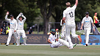 Kyle Jamieson appeals during day one of the second International Test Cricket match between the New Zealand Black Caps and Pakistan at Hagley Oval in Christchurch, New Zealand on Sunday, 3 January 2021. Photo: Martin Hunter / lintottphoto.co.nz