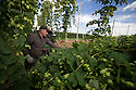05/09/16<br />