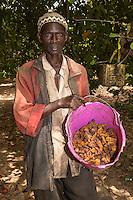 Farmer Holding Bucket of Dried Cashew Apple Fruit, near Sokone, Senegal