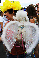 A dog dressed in a carnival costume, with wids as an angel, takes part in the animals carnival, Copacabana, Brazil, February 3, 2013. (Austral Foto/Renzo Gostoli)