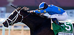 December 26, 2020: Smooth Like Strait with Umberto Rispoli wins the Mathis Brothers Mile at Santa Anita Park in Arcadia, California on December 26, 2020. Evers/Eclipse Sportswire/CSM