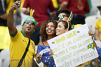 Brazil fans show their support for David Luis